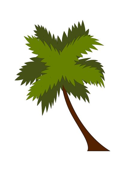 coco tree