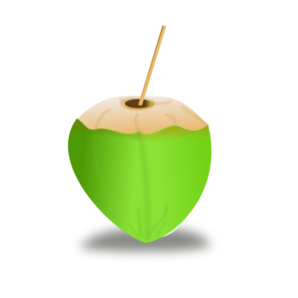 Green coconut vector image