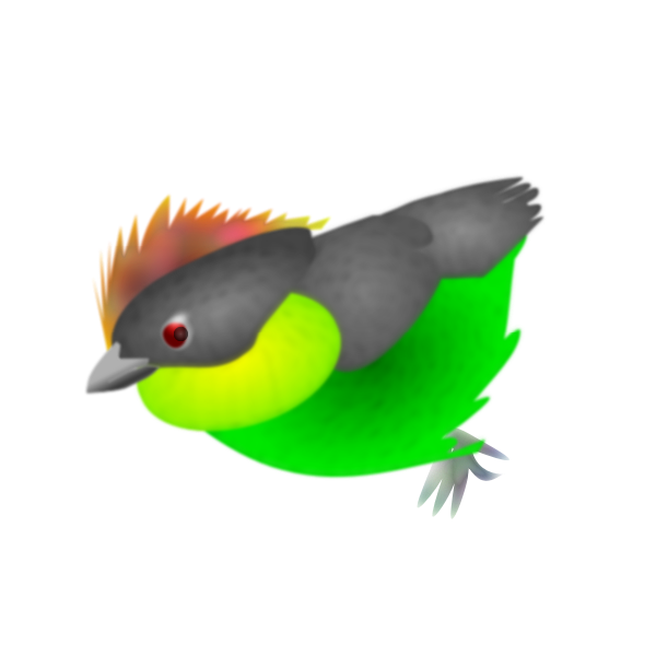 Colored finch