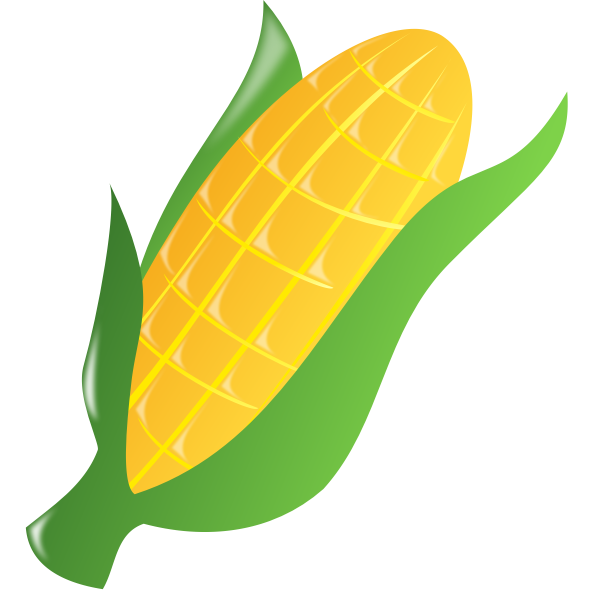 Corn on the cob 2
