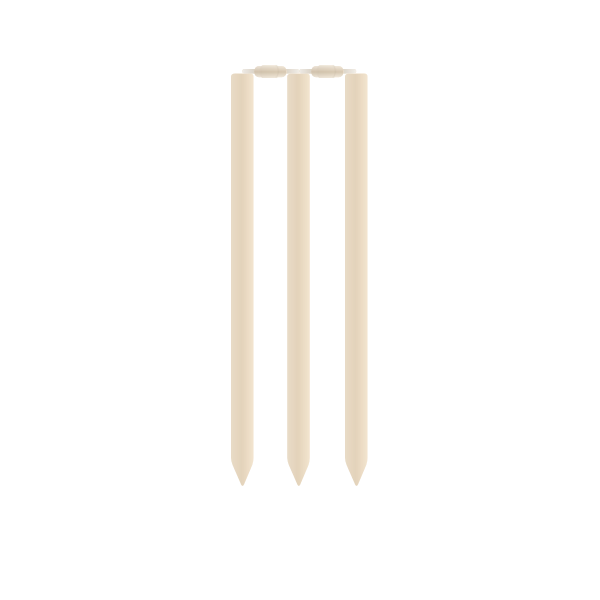 Cricket stumps and rails vector image