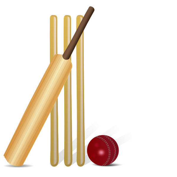 Vector drawing of cricket equipment