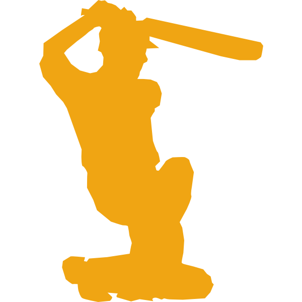 Cricket player silhouette vector image