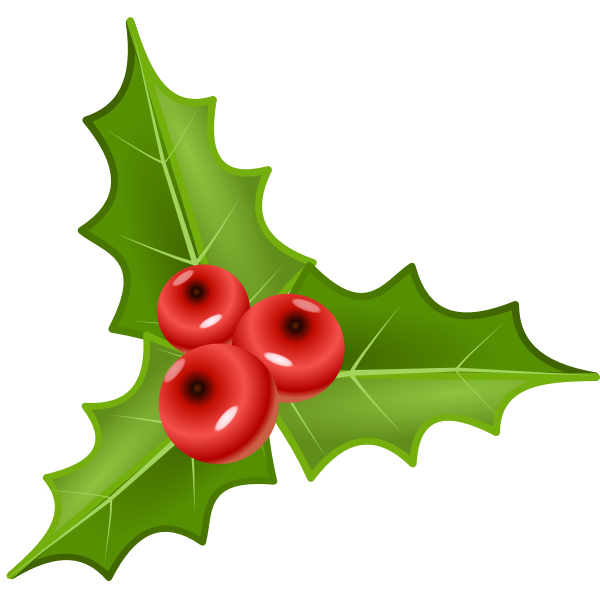 Three holly leaves with three crones vector illustration