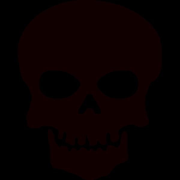 Image of pirate skul