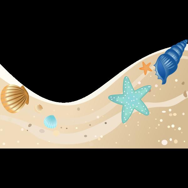 Summer beach with seashells vector image