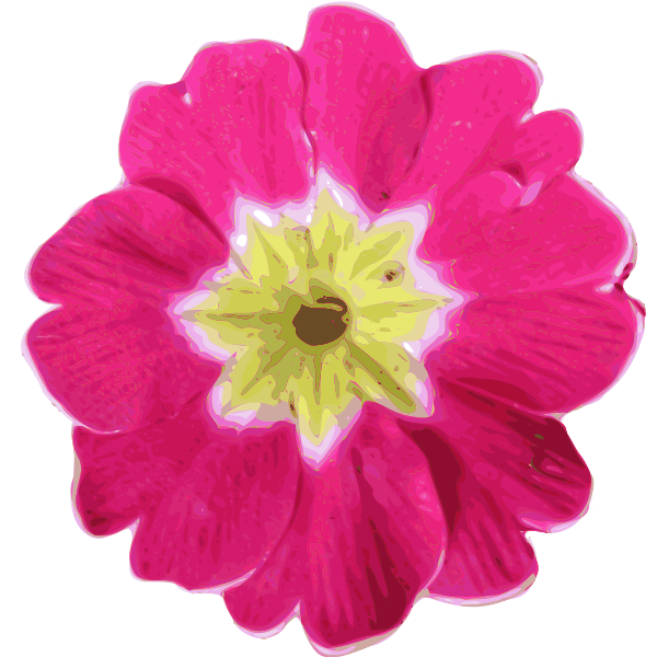 Realistic pink flower