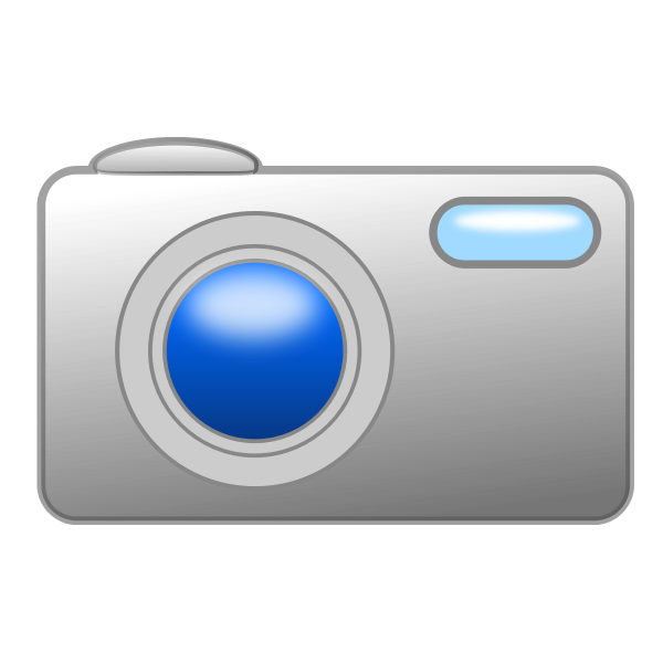 Digital photo cam vector image