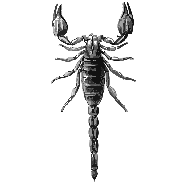 Scorpion grayscale vector drawing