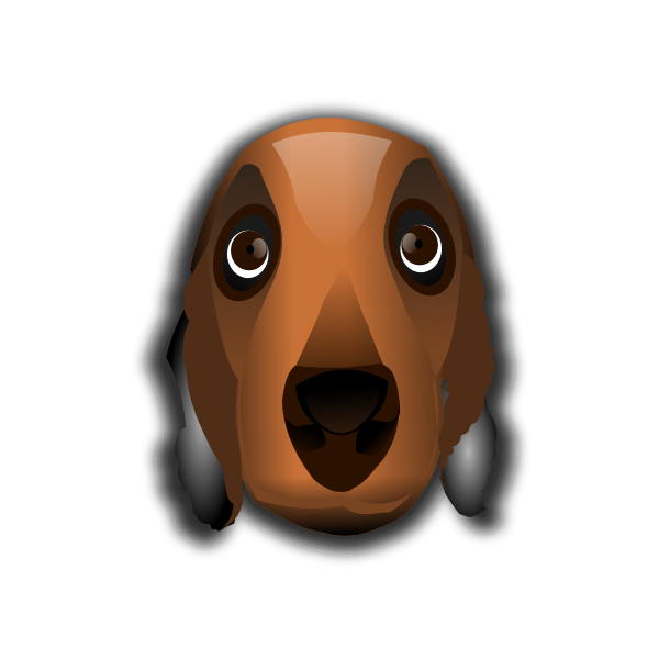 Dog's head