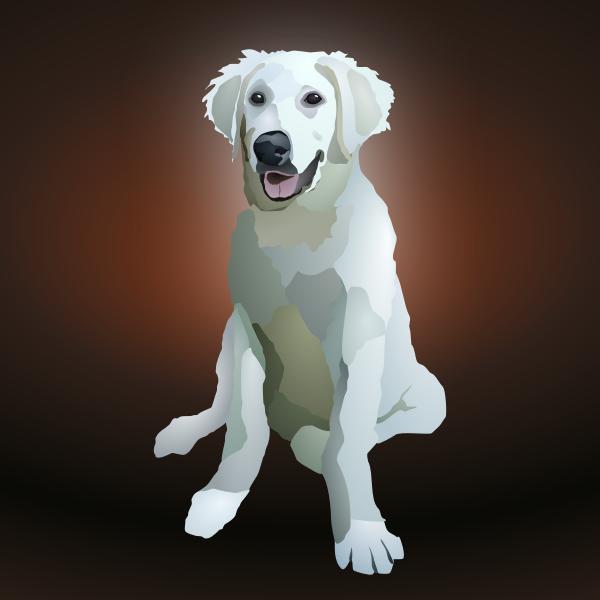 Vector clip art of big eared puppy