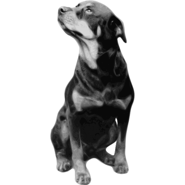 Photorealistic vector drawing of Rottweiler