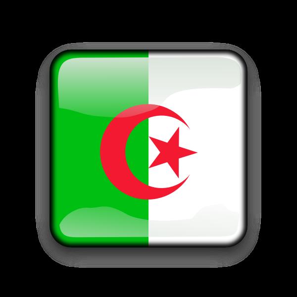 Glossy Algerian vector flag