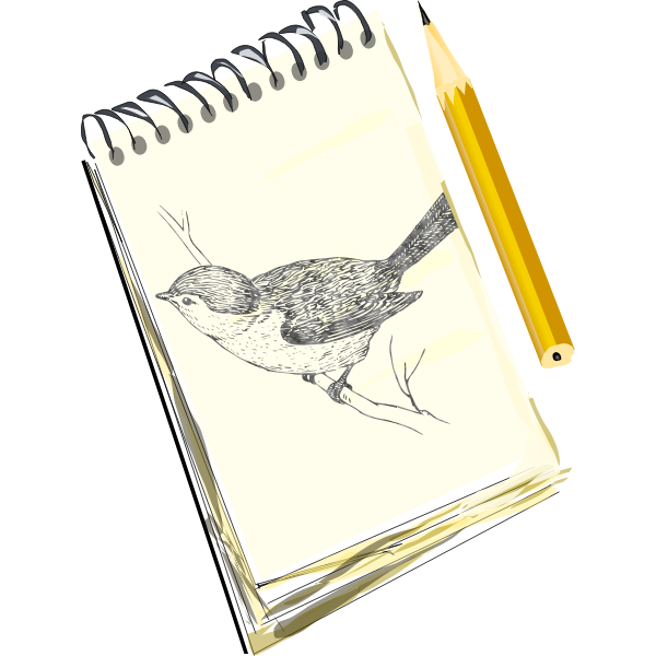 Sketchpad drawing of a bird on a pad