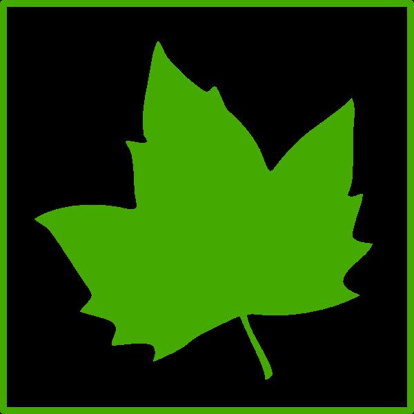 Eco leaf vector icon