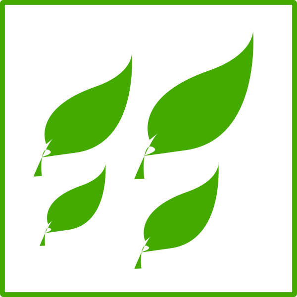 Eco green leaves icon vector image