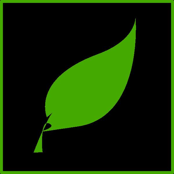 Eco green leaf vector icon