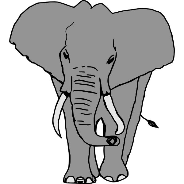 Elephant-1573205065