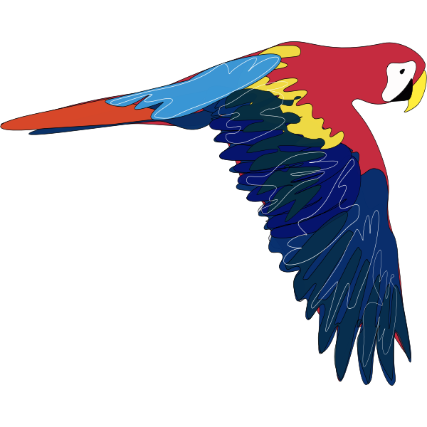Vector graphics of macaw flying