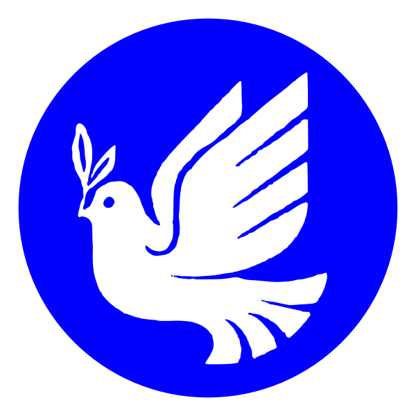 White pigeon of peace vector image