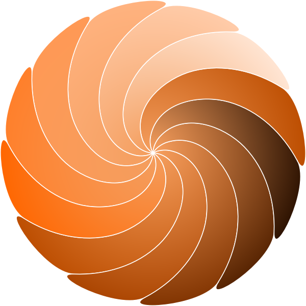 Color spirale vector image