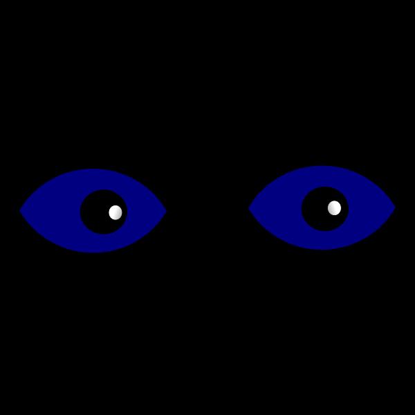 Eyes close-up vector image