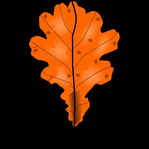 Brown fall leaf vector clip art