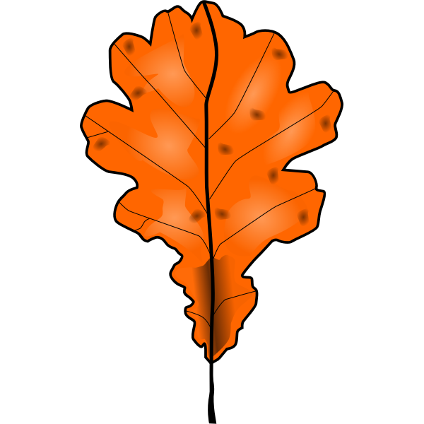 Brown fall leaf vector clip art