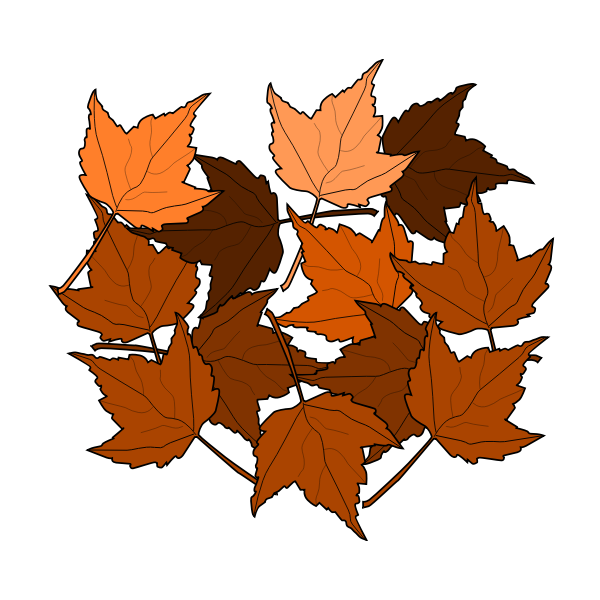 Brown fall leaves vector drawing
