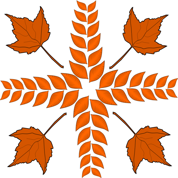 Autumn leaves arrangement vector image