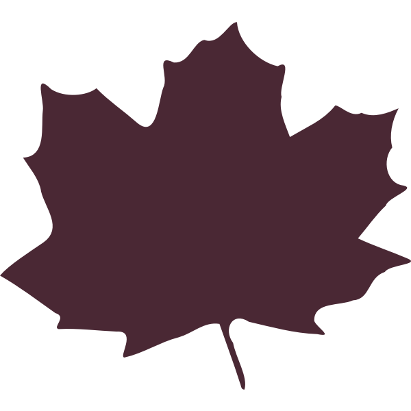 Color maple leaf silhouette vector image