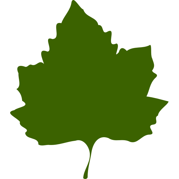 Green autumn leaf vector drawing