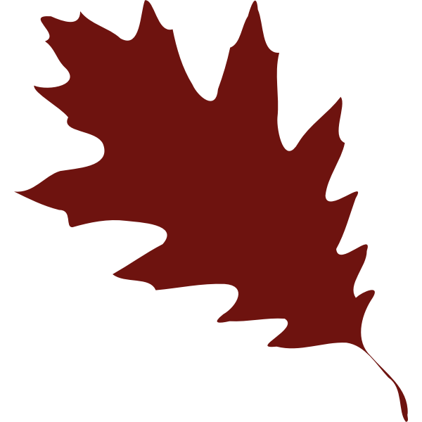 A red leaf silhouette vector illustration