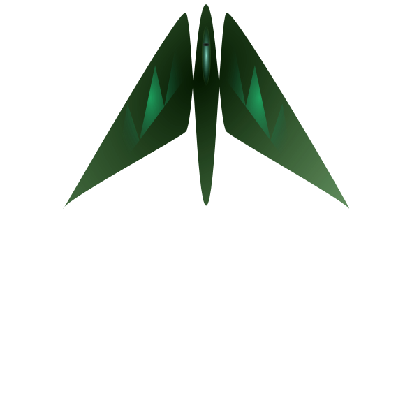 Military jet fighter vector