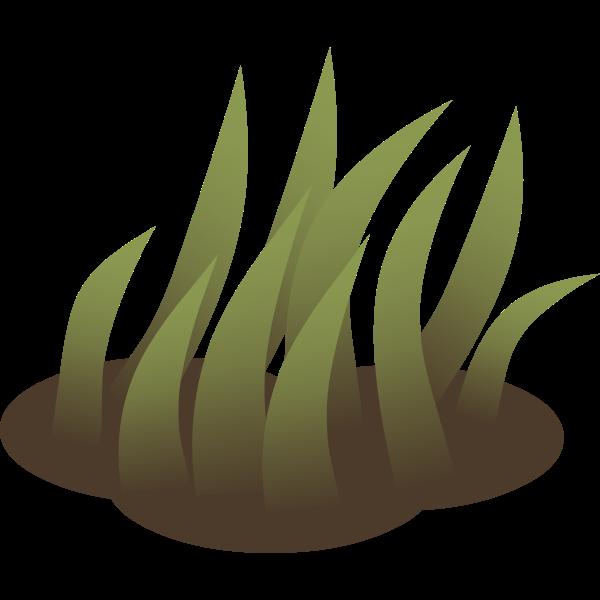 firebog grass solid 5