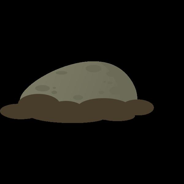 firebog stone moss 1