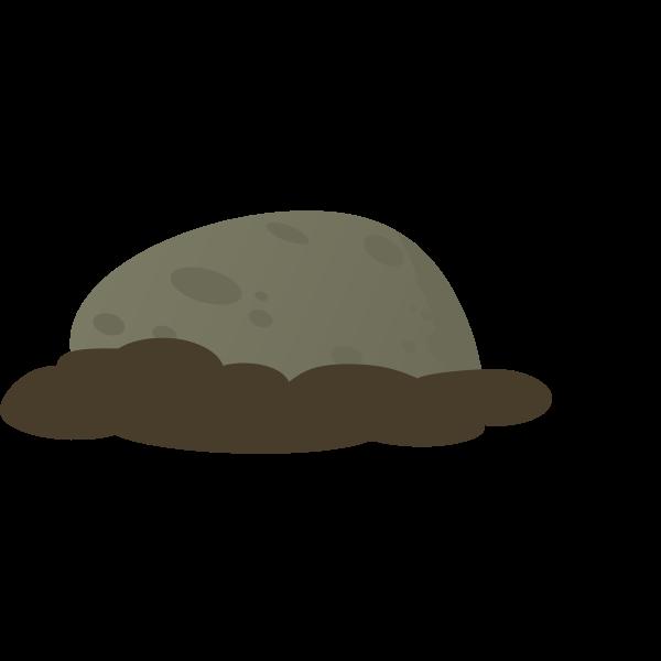 firebog stone moss 2