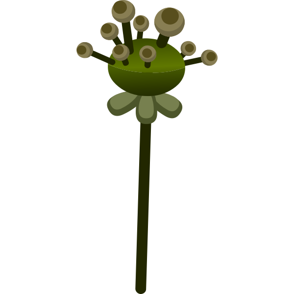 Vector image of shades of green flower like plant