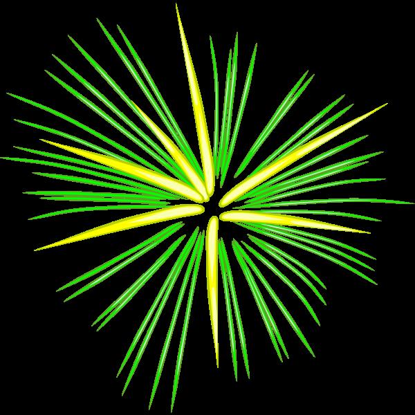 Green fireworks vector image