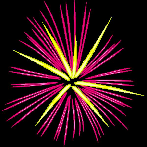 Pink fireworks vector illustration