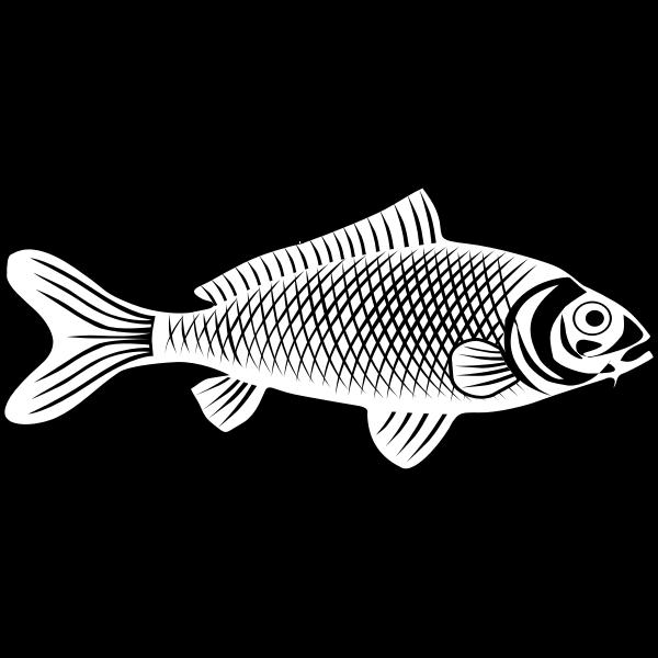 Fish line art