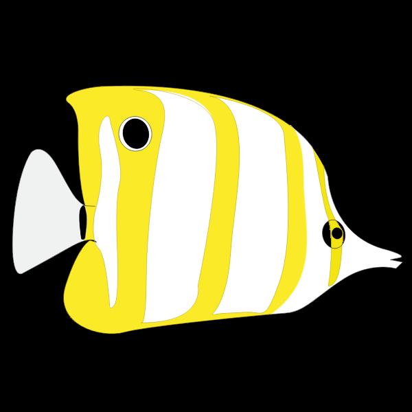 Yellow tropical fish image