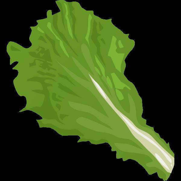 Veggie leaf