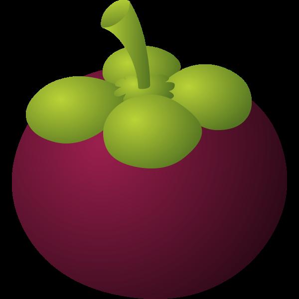 food mangosteen