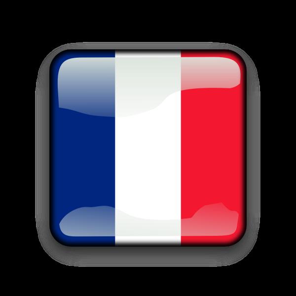 Country flag button vector