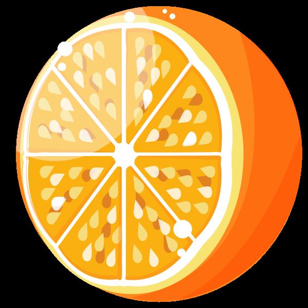 Fresh orange half