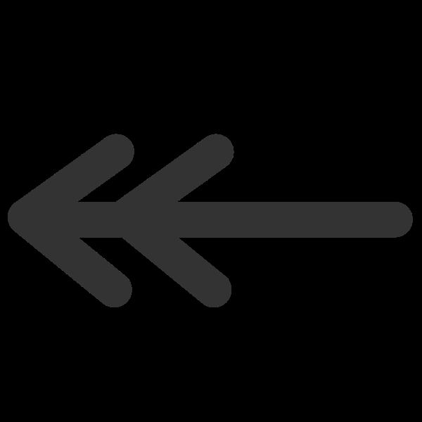 Line double line arrow begin