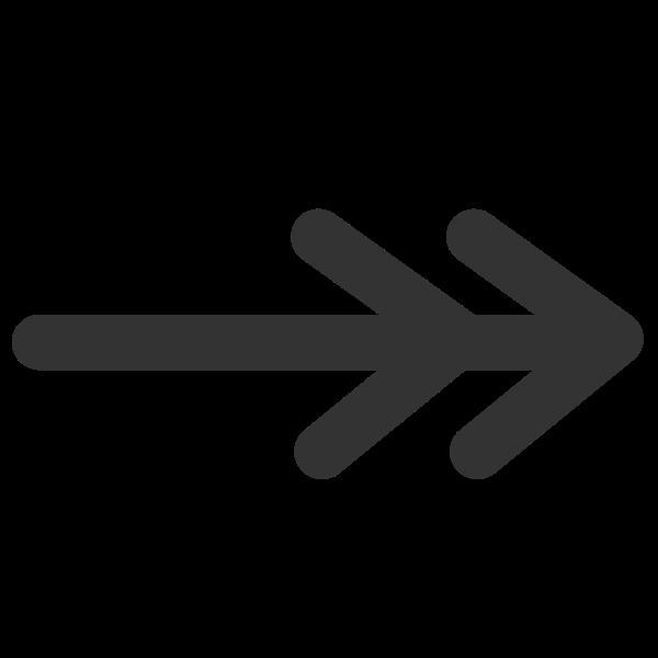 Line double line arrow end icon