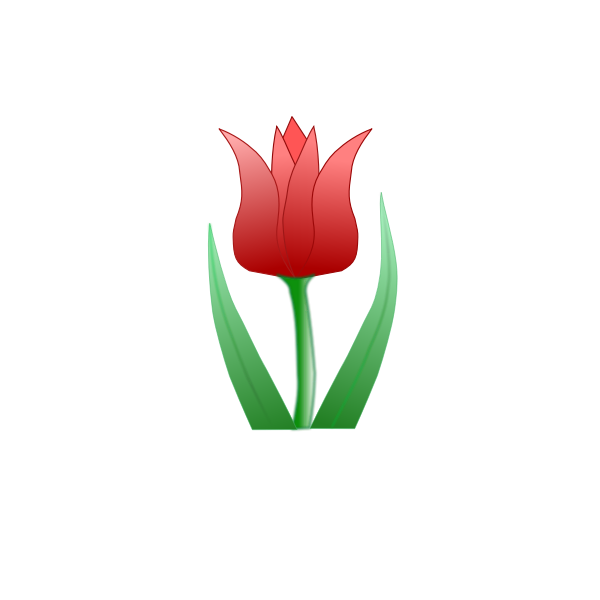 Tulip flower vector clip art