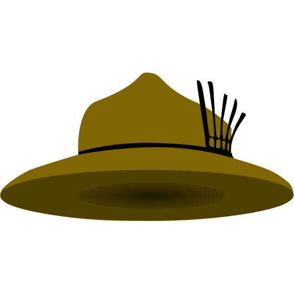 Scout hat vector image